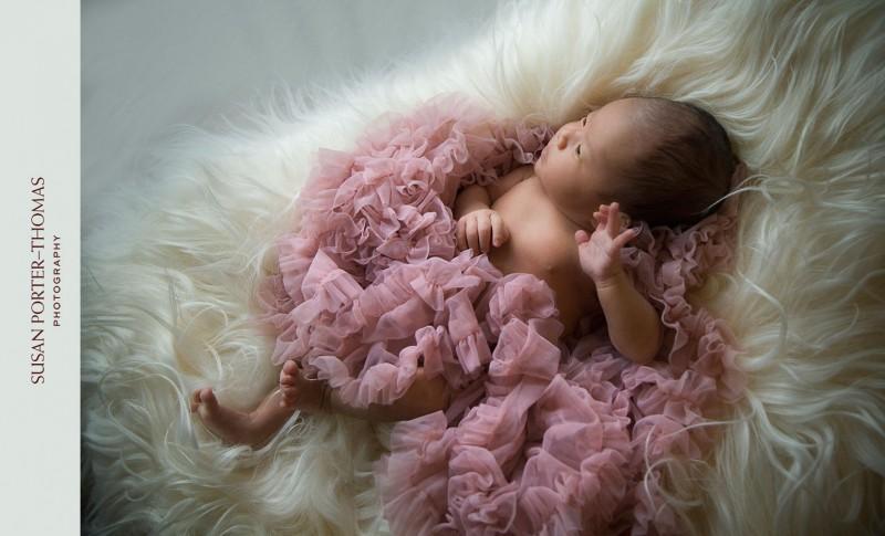newborn portrait natural light