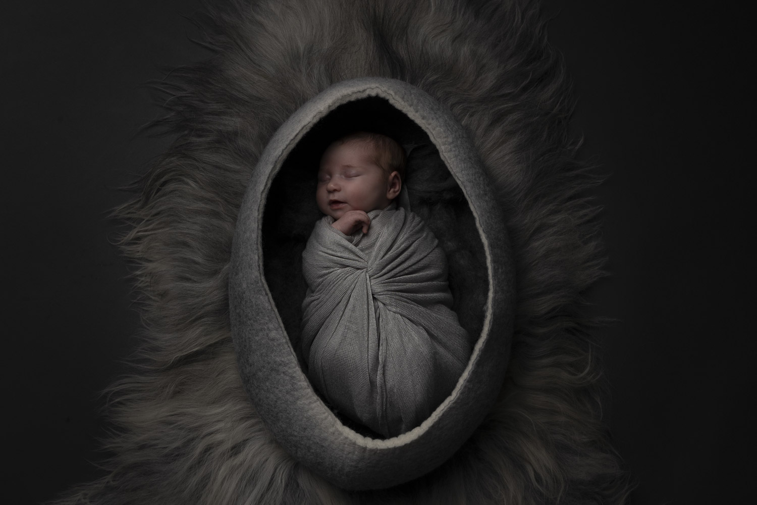 newborn portrait in felt bowl grey